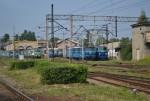 DSC_0019 blog
